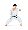 Karate attack vector