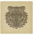 Tiger head on grunge background vector