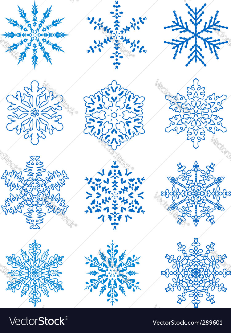 12 snowflakes vector | Price: 1 Credit (USD $1)