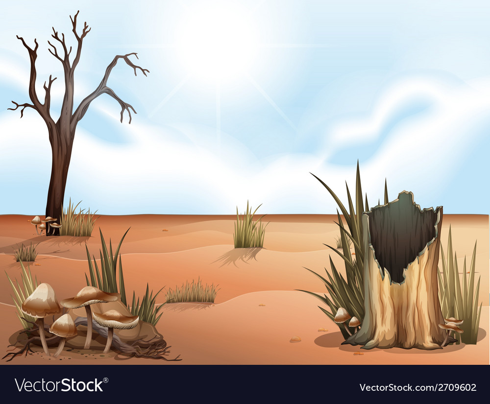A desert vector | Price: 3 Credit (USD $3)