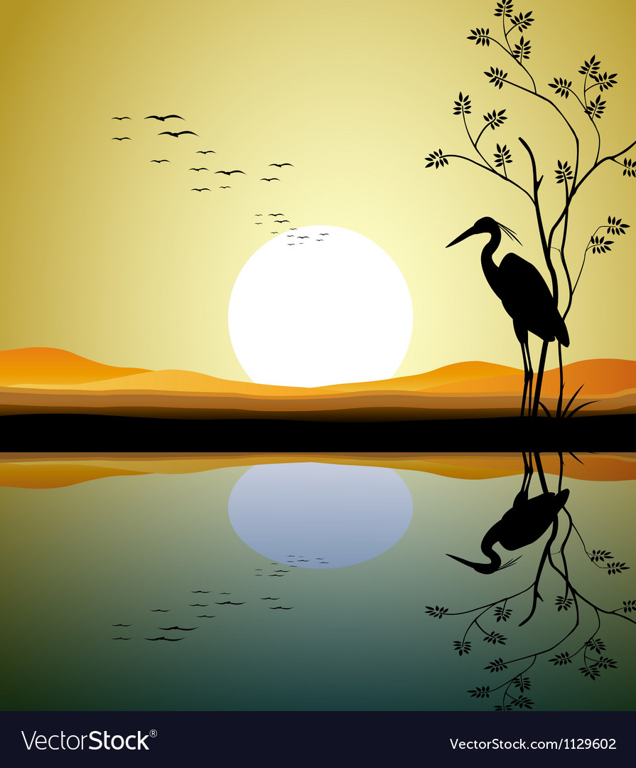 Heron silhouette on lake vector | Price: 1 Credit (USD $1)