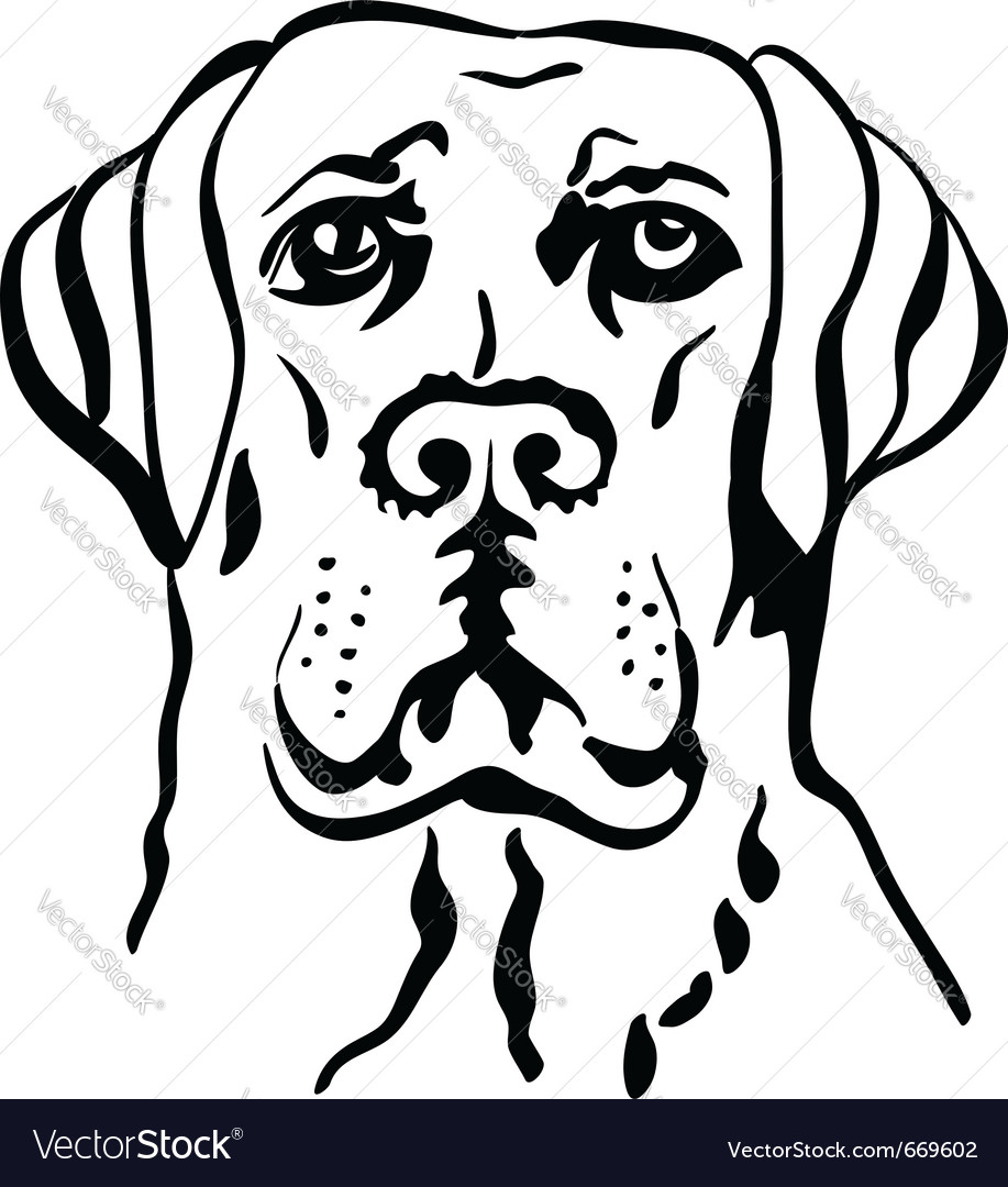 Labrador vector | Price: 1 Credit (USD $1)