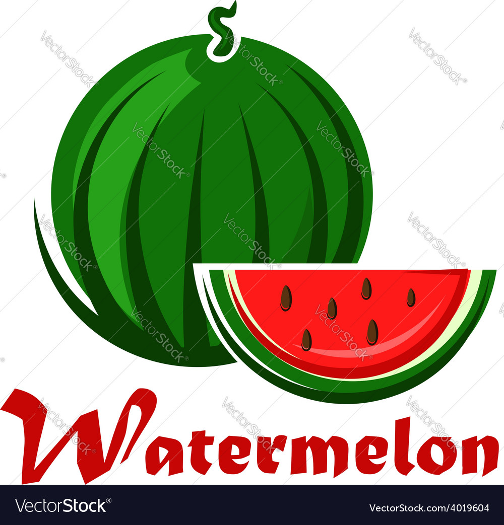 Cartoon striped green watermelon with slice vector | Price: 1 Credit (USD $1)