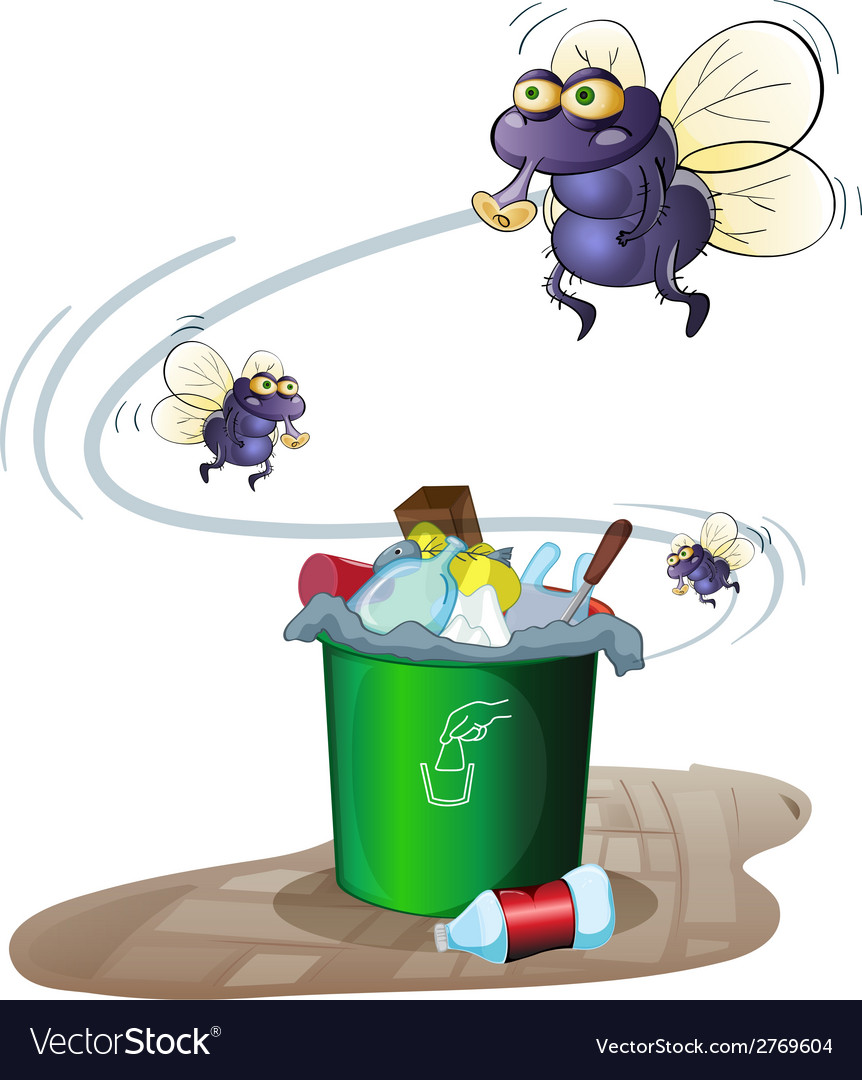 Garbage and flies vector | Price: 1 Credit (USD $1)
