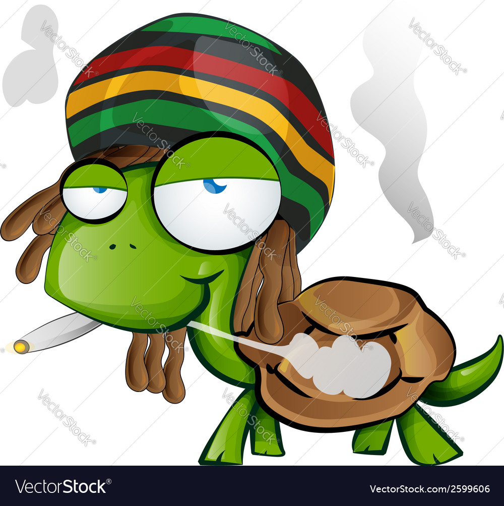 Jamaican tortoise cartoon on white background vector | Price: 1 Credit (USD $1)