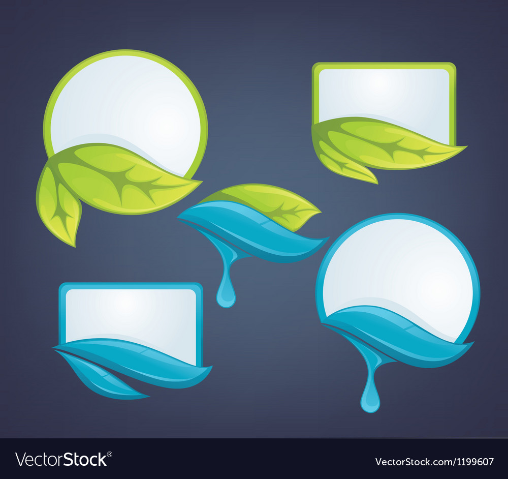 Fresh leaves and water drops nature labels vector | Price: 1 Credit (USD $1)