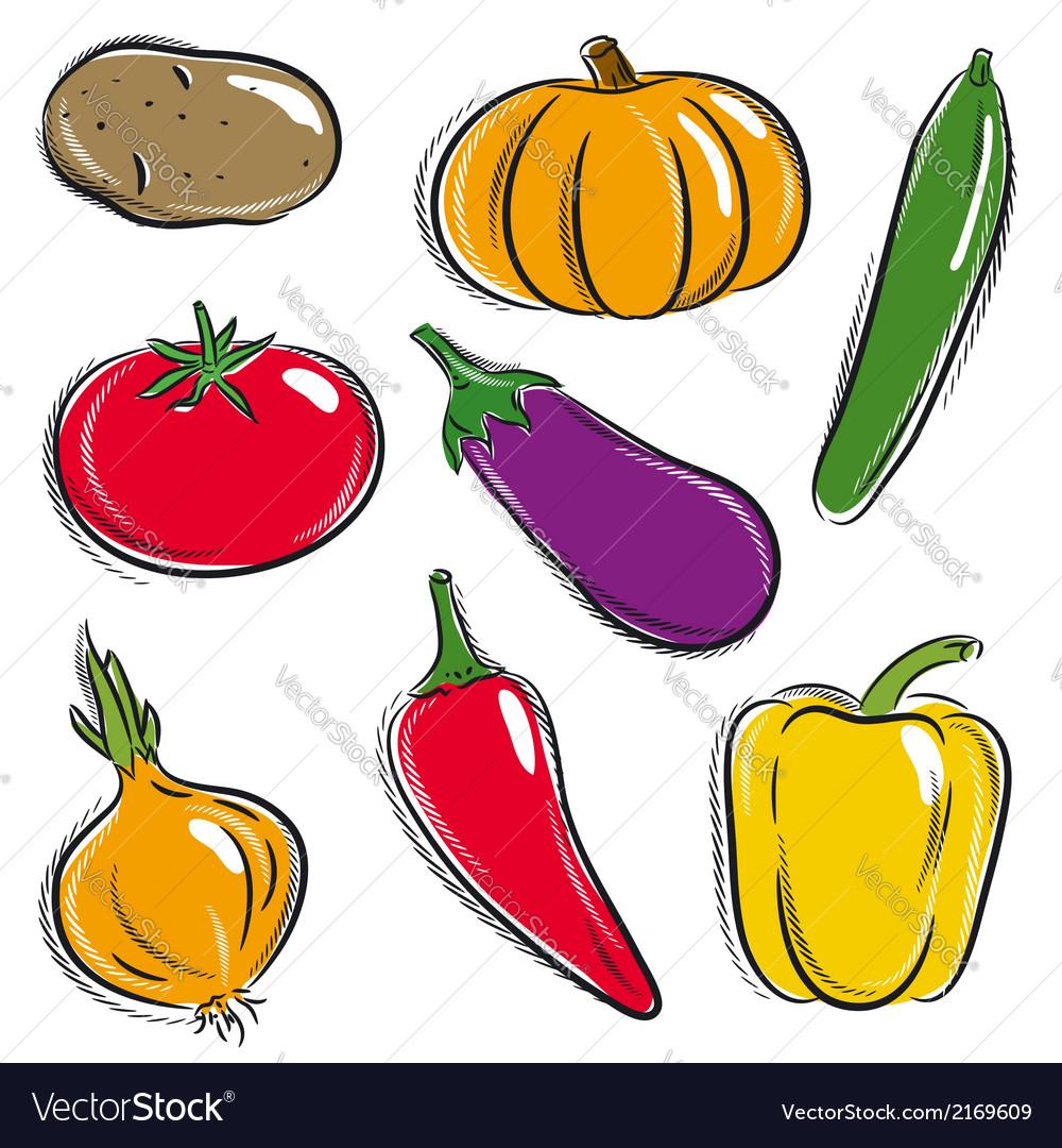 Set of vegetable potato pumpkin cucumber vector | Price: 1 Credit (USD $1)