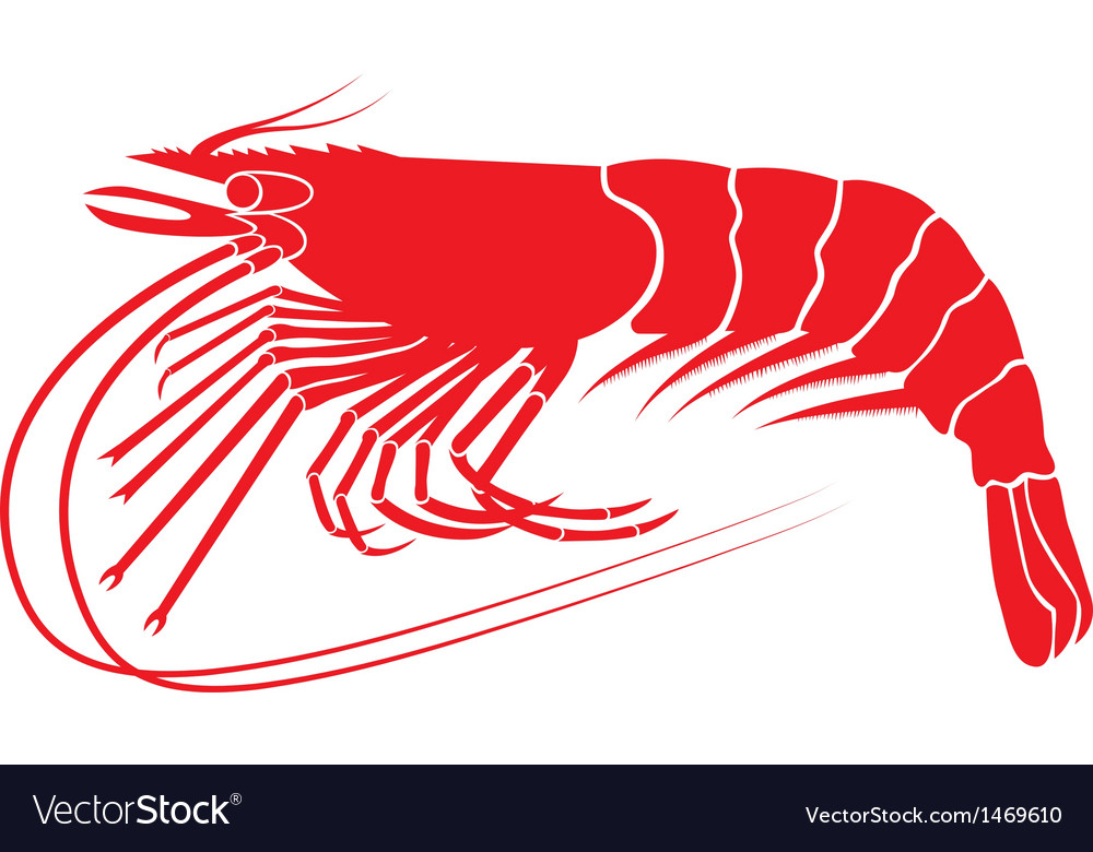 Shrimp v8 vector | Price: 1 Credit (USD $1)