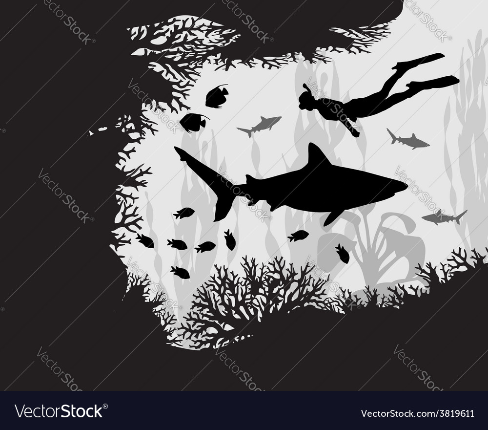 Diver in coral reef vector | Price: 1 Credit (USD $1)