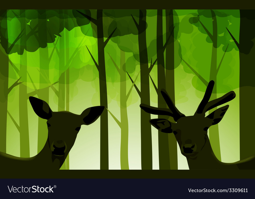Forest deers vector | Price: 1 Credit (USD $1)