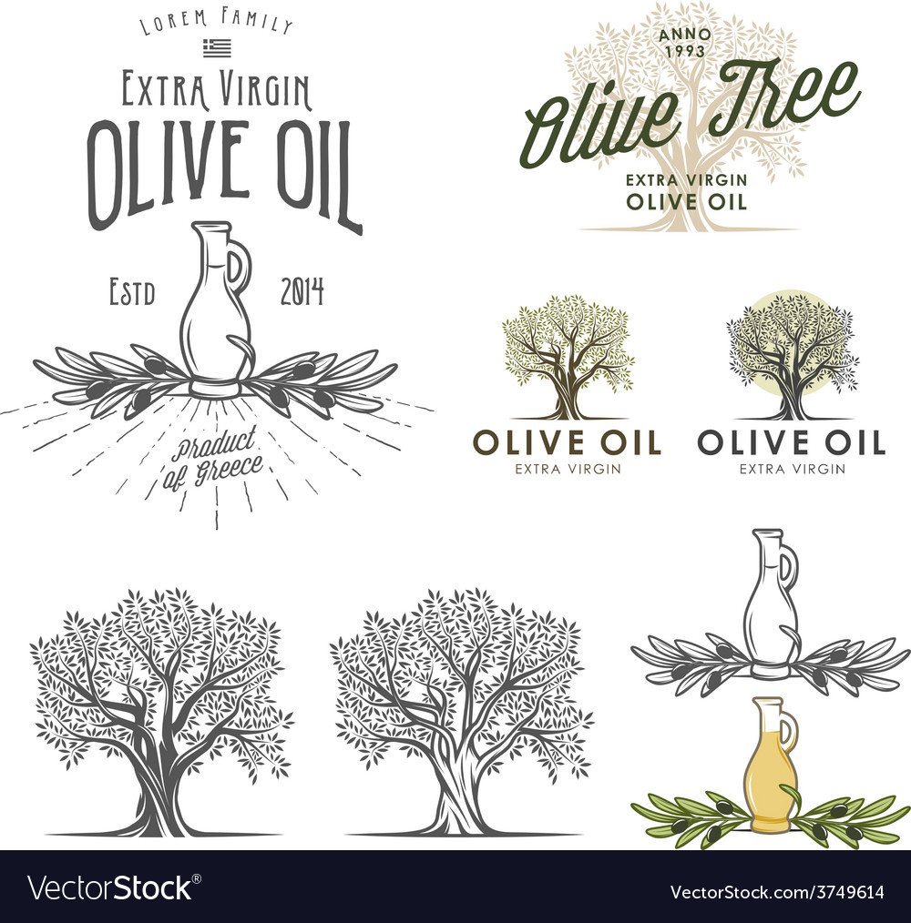Olive oil labels and design elements vector | Price: 1 Credit (USD $1)