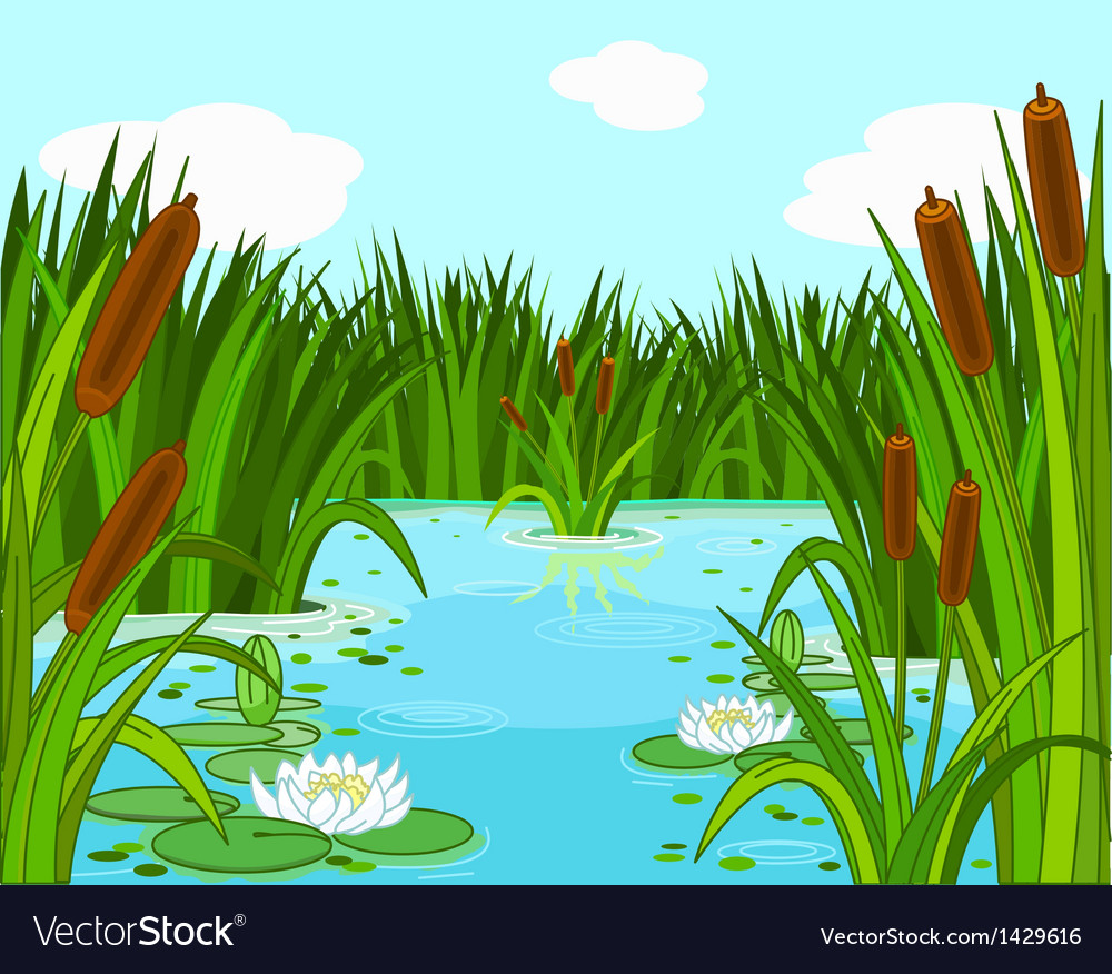 Pond scene vector | Price: 1 Credit (USD $1)