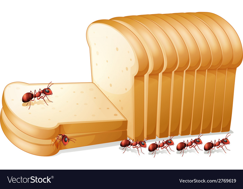 Bread and ants vector | Price: 1 Credit (USD $1)