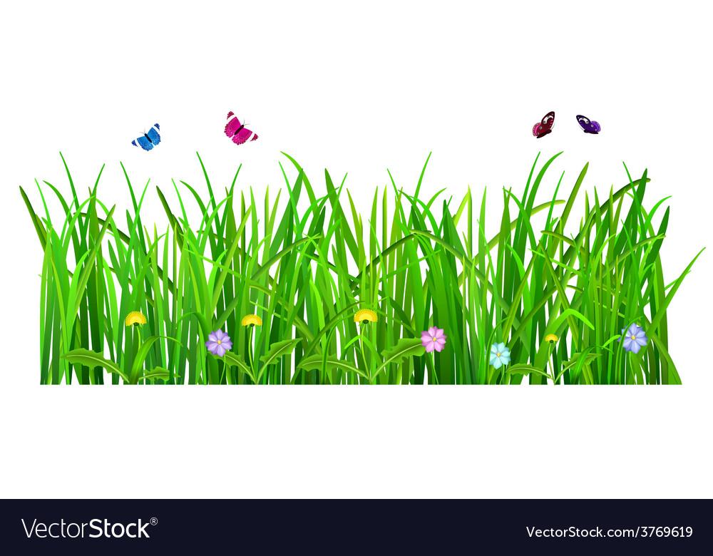 Green grass vector | Price: 1 Credit (USD $1)