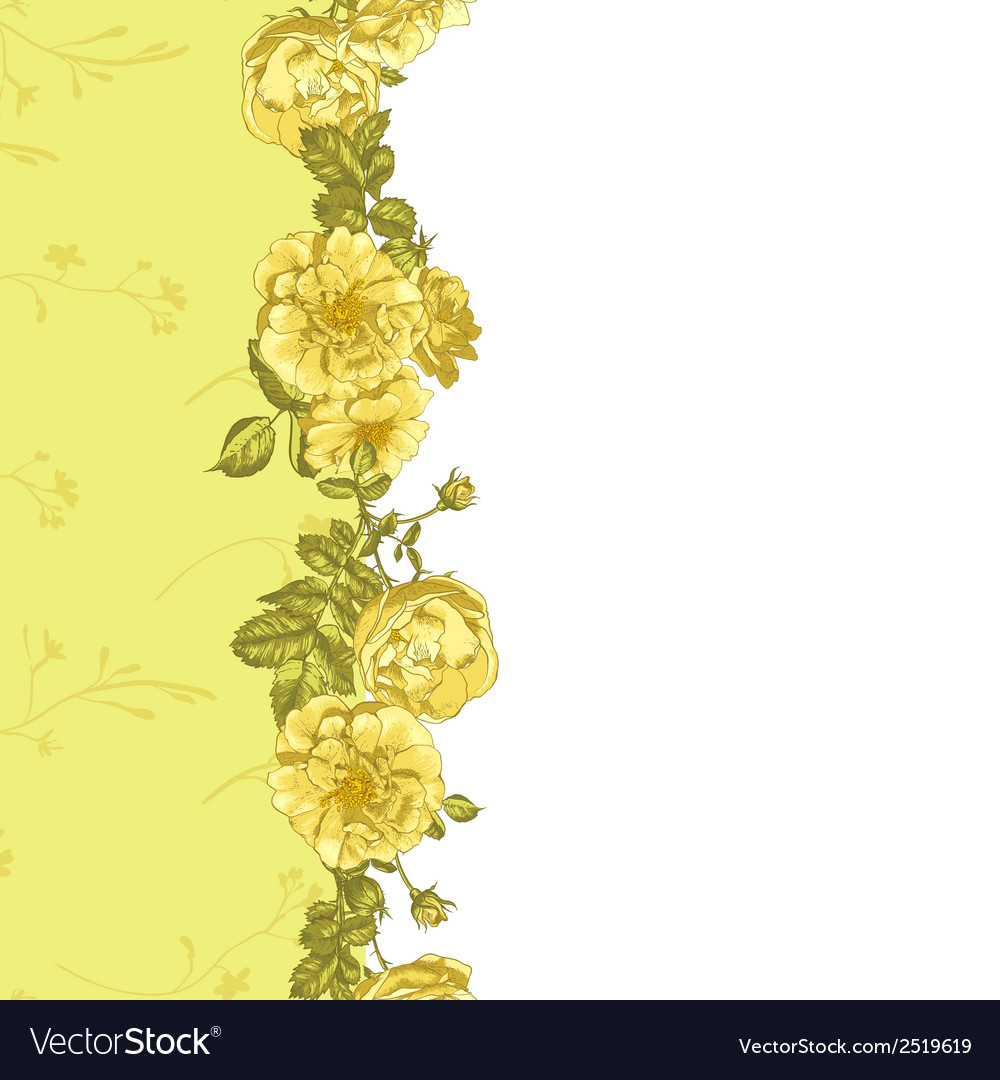 Seamless border of blossom roses vector | Price: 1 Credit (USD $1)
