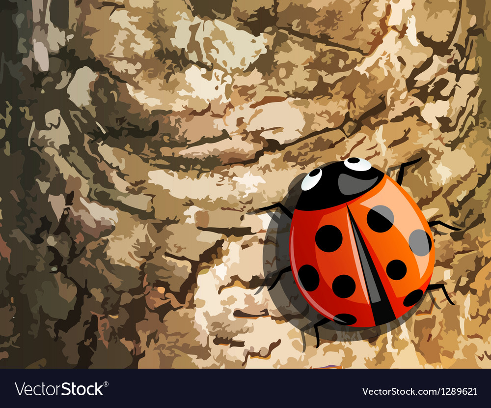 Lady bug vector | Price: 1 Credit (USD $1)