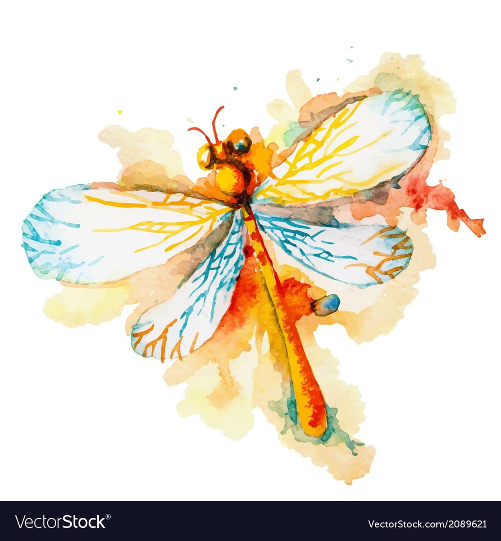 Orange watercolor dragonfly vector | Price: 1 Credit (USD $1)