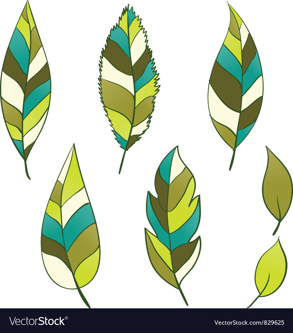 Set of hand-drawn leaves vector | Price: 1 Credit (USD $1)