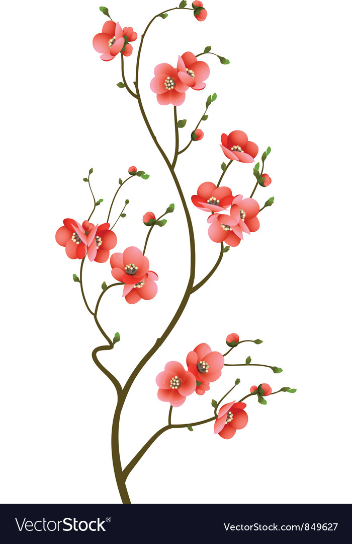 Cherry blossom branch abstract background vector | Price: 1 Credit (USD $1)