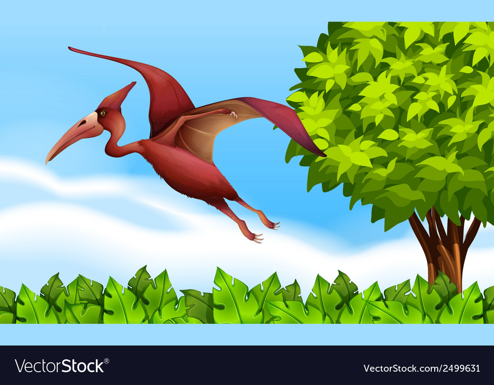 A pterodactyl vector | Price: 1 Credit (USD $1)