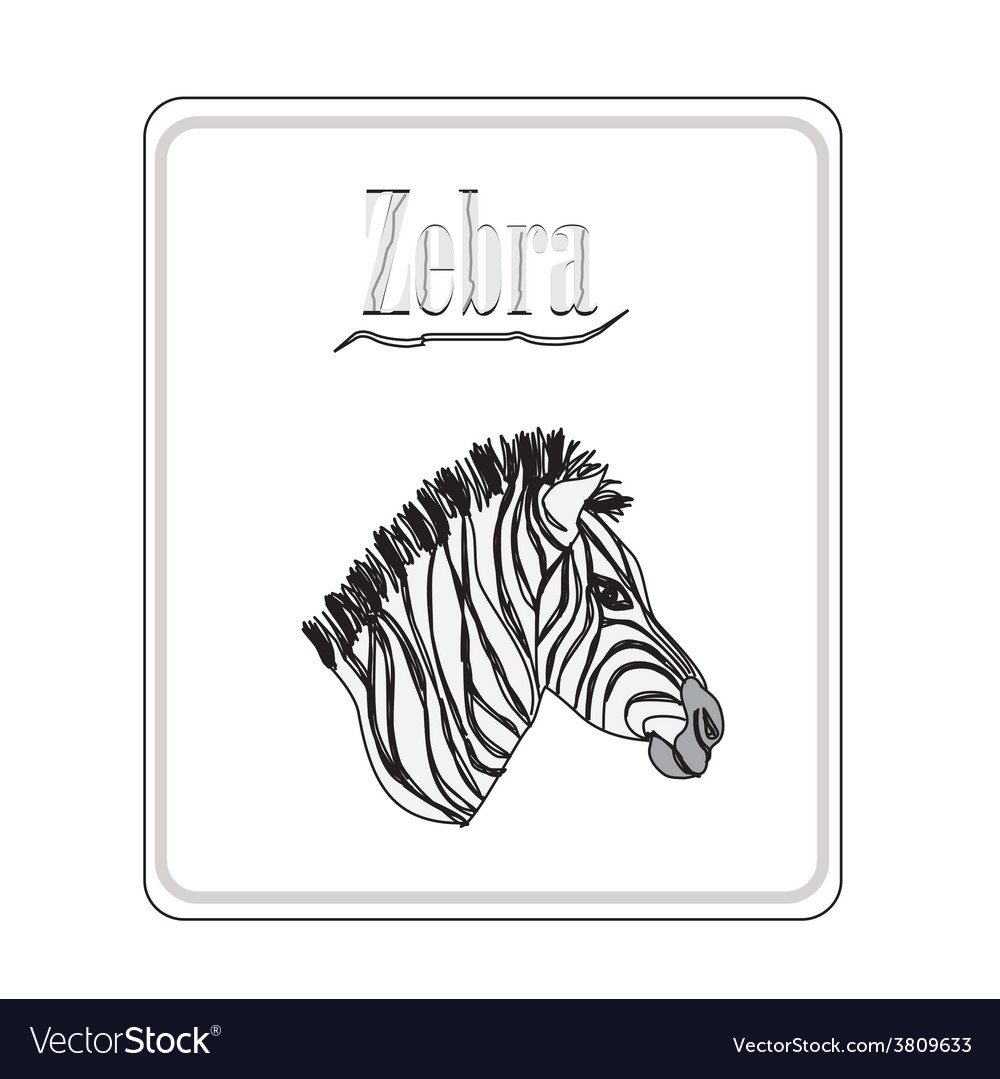 Zebra hand drawn sketch isolated on white backgro vector | Price: 1 Credit (USD $1)