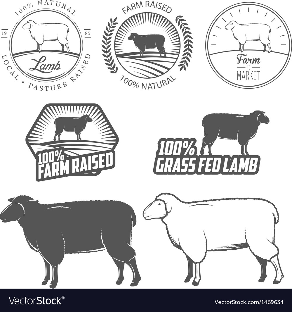 Set of lamb labels badges and design elements vector | Price: 1 Credit (USD $1)