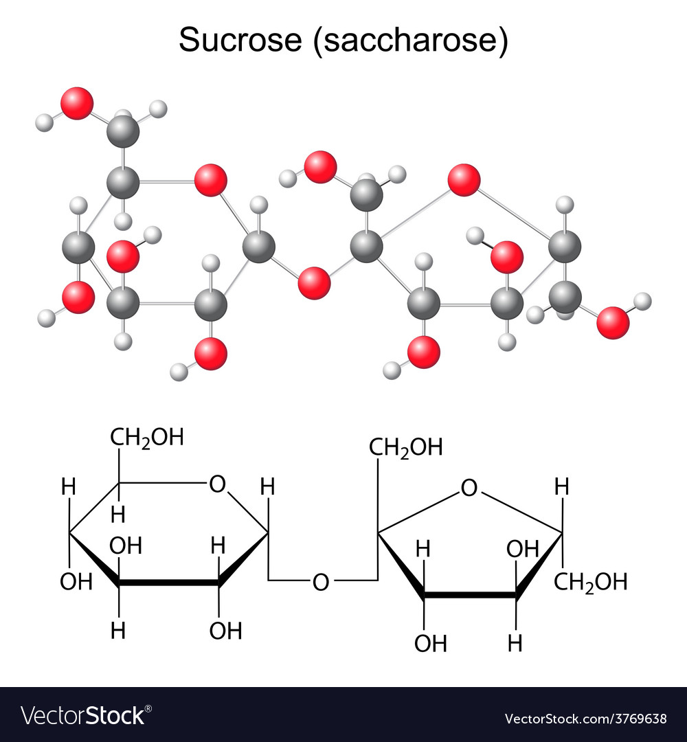 Structural chemical formula and model of sucrose vector