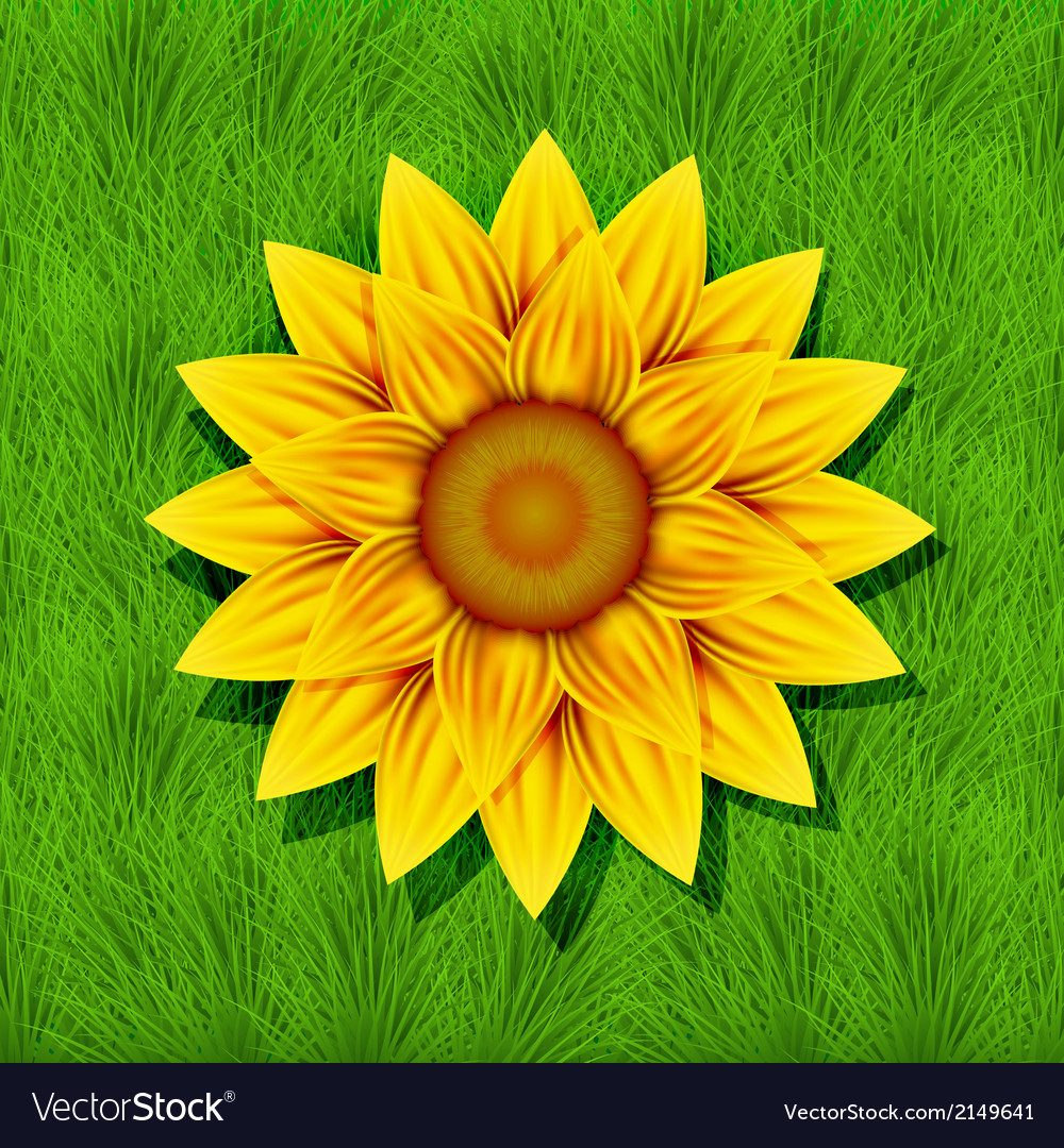 Creative yellow flower on grass background vector | Price: 1 Credit (USD $1)