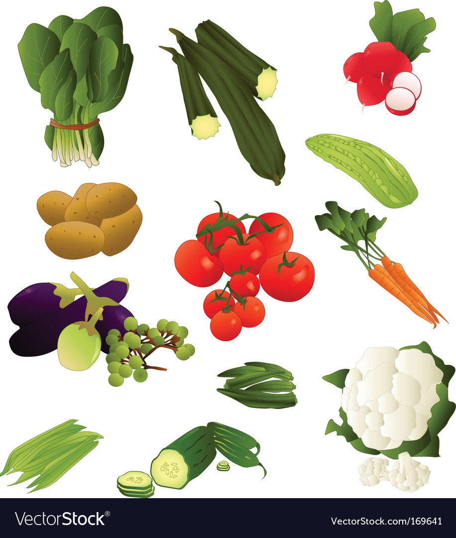 Indian vegetables vector | Price: 1 Credit (USD $1)