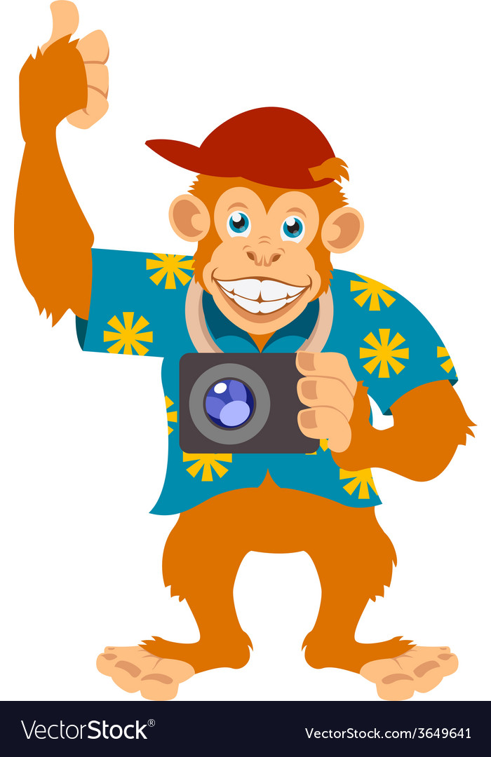 Monkey with a cam vector | Price: 1 Credit (USD $1)