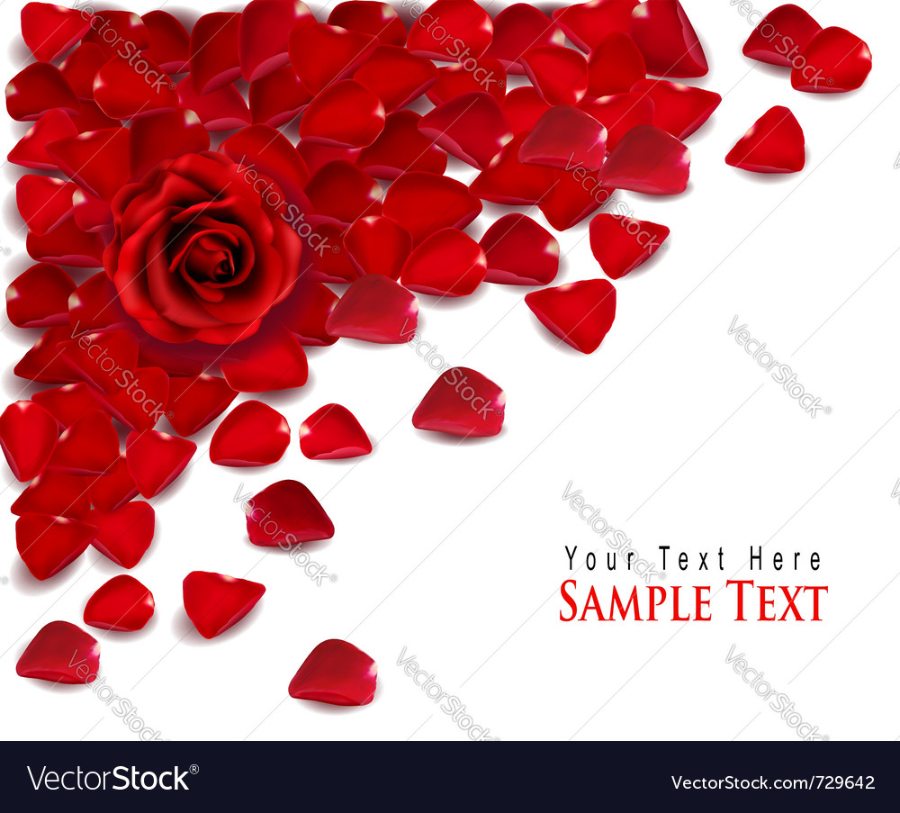 Background of red rose petals vector | Price: 3 Credit (USD $3)