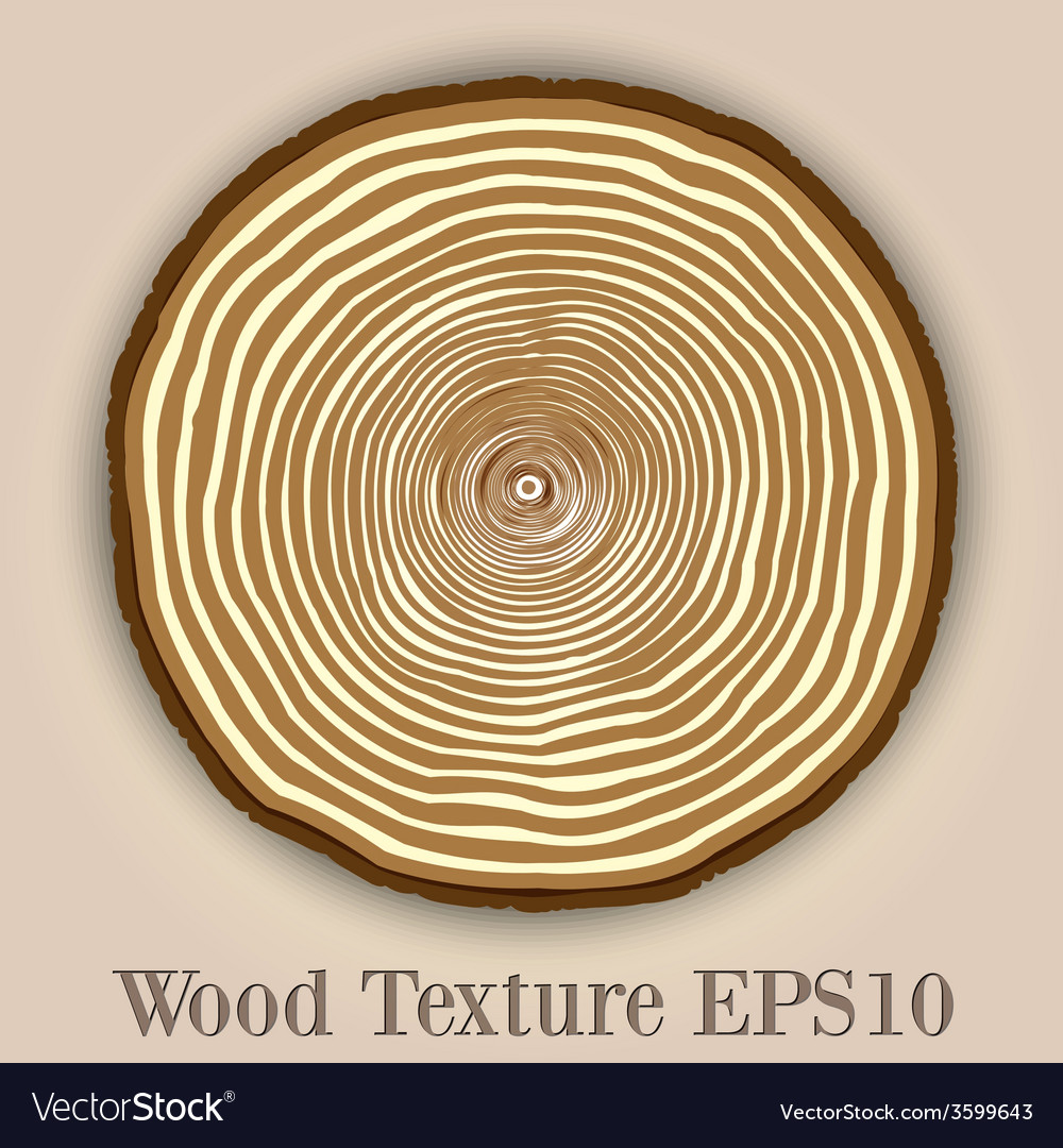 Wood texture background with tree rings vector | Price: 1 Credit (USD $1)