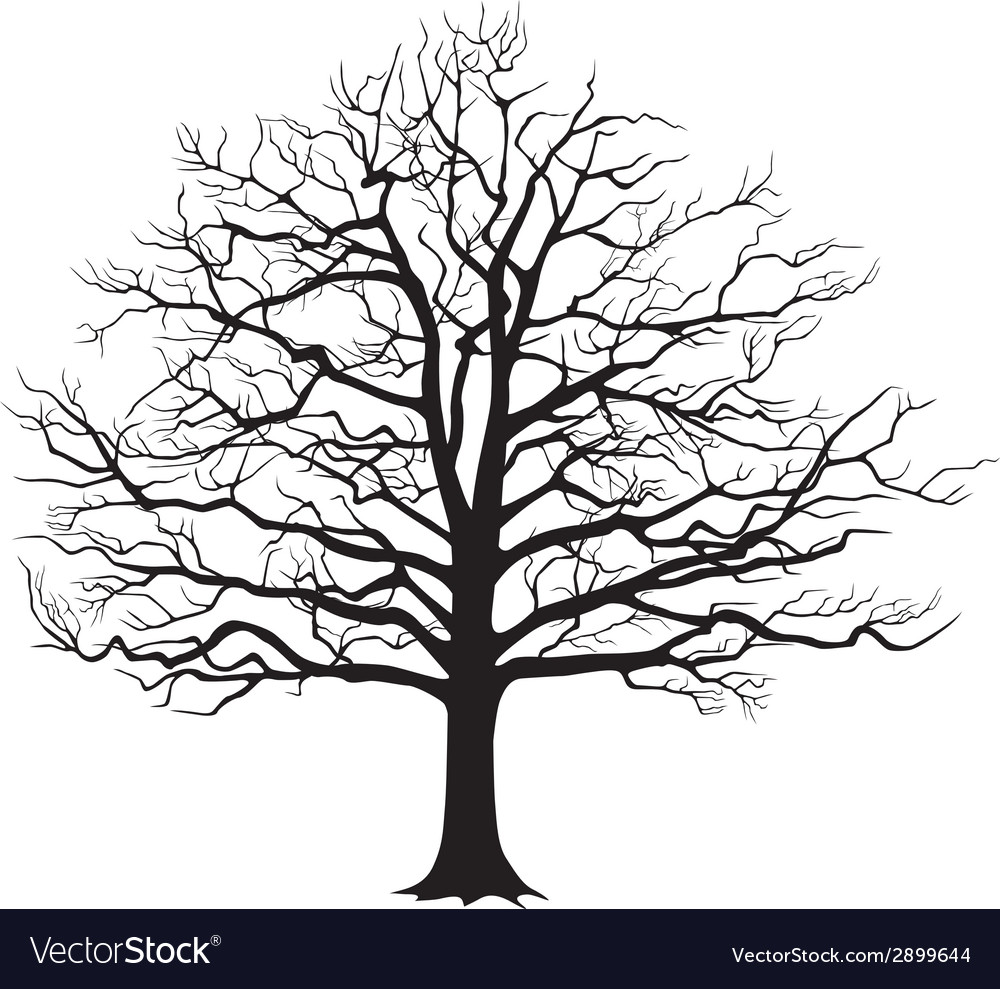 Black silhouette bare tree vector | Price: 1 Credit (USD $1)
