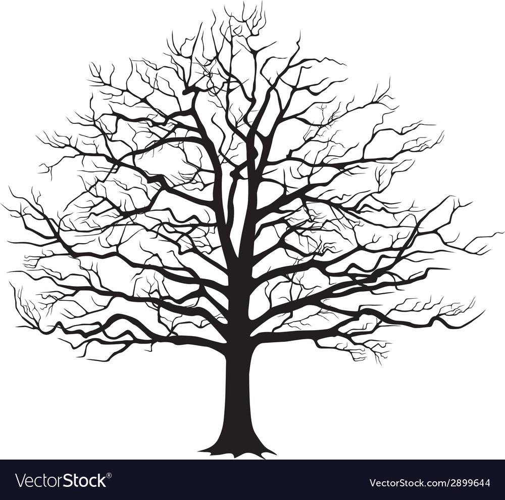 Black silhouette bare tree vector | Price: 1 Credit (USD $1)