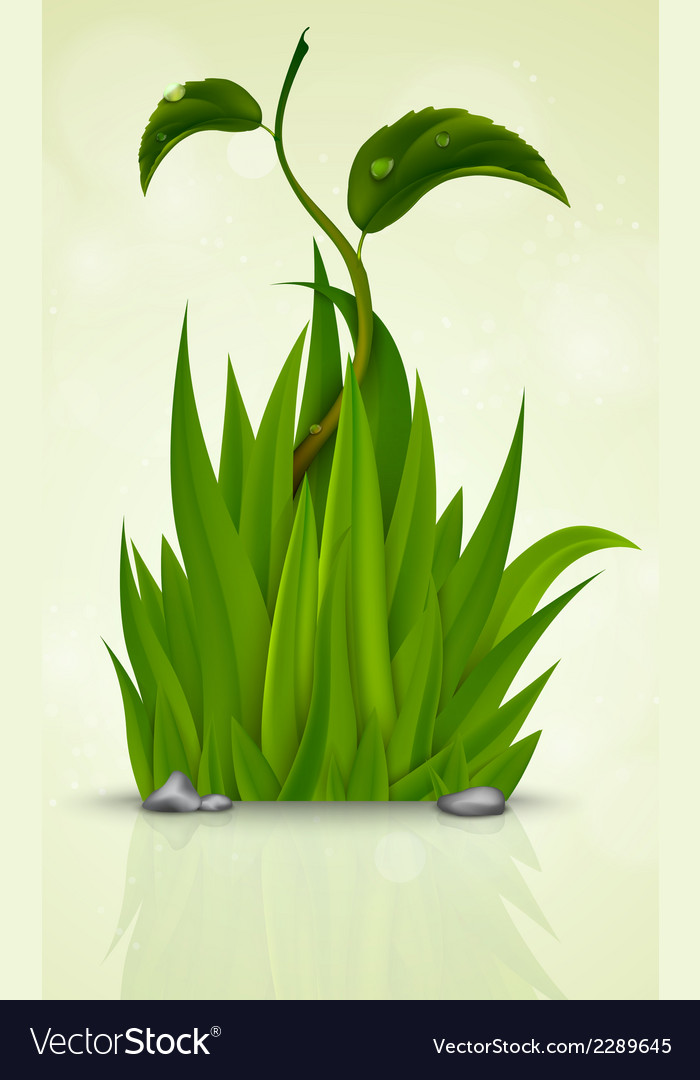 Green grass sprouting from the earth vector | Price: 1 Credit (USD $1)