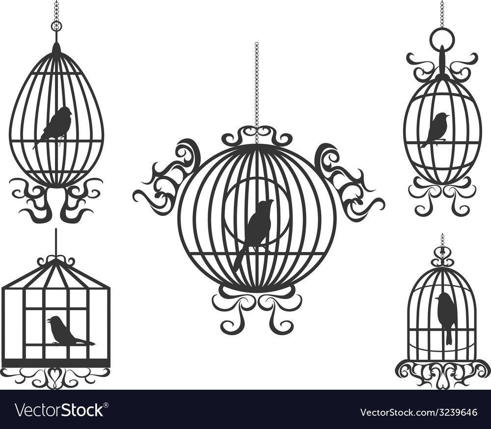 Birdcage with birds vector | Price: 1 Credit (USD $1)