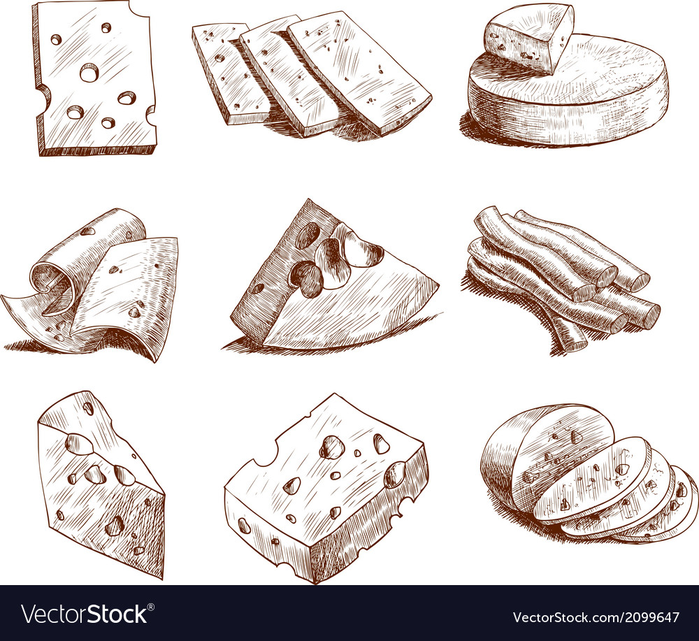 Cheese sketch collection vector | Price: 3 Credit (USD $3)