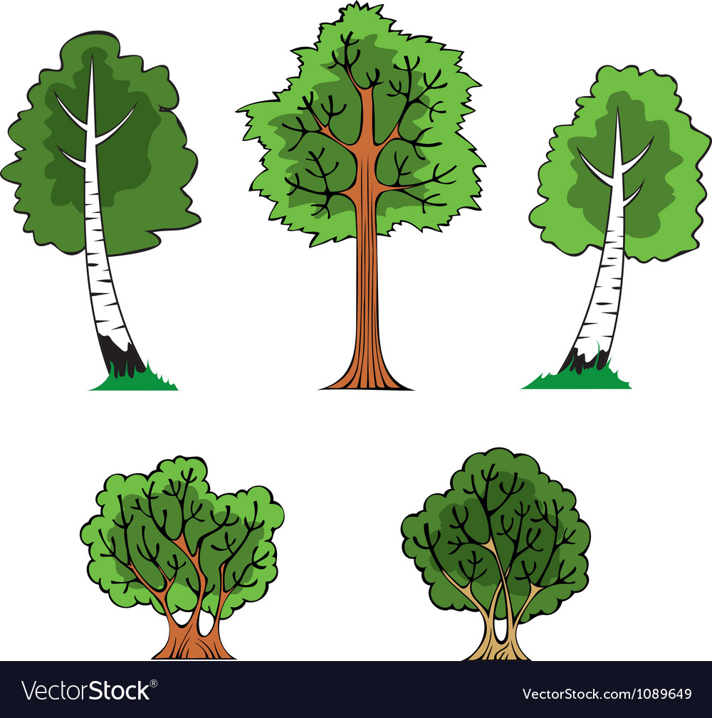 Trees and bushes vector | Price: 1 Credit (USD $1)