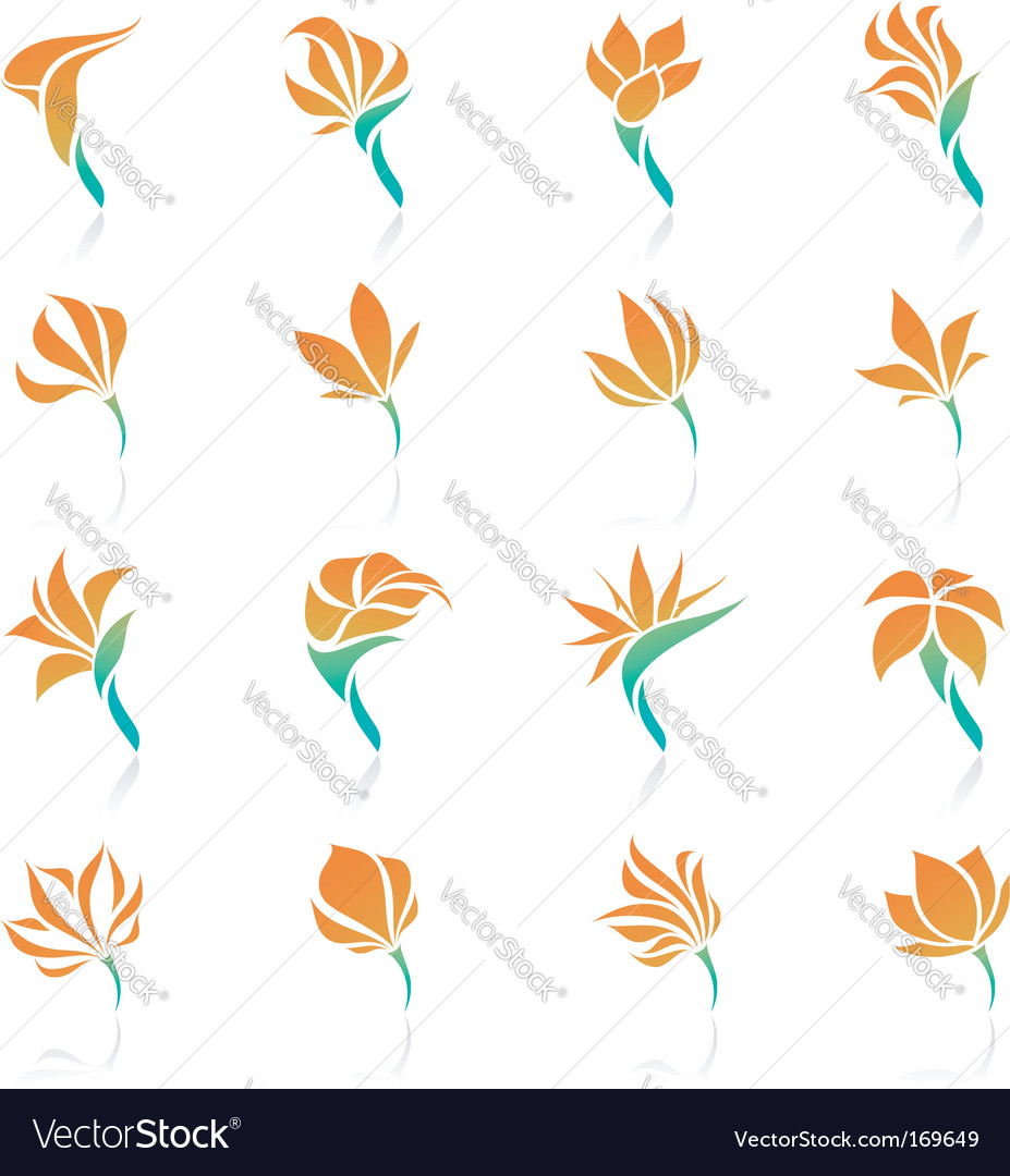 Tropical flowers elements for design vector | Price: 1 Credit (USD $1)