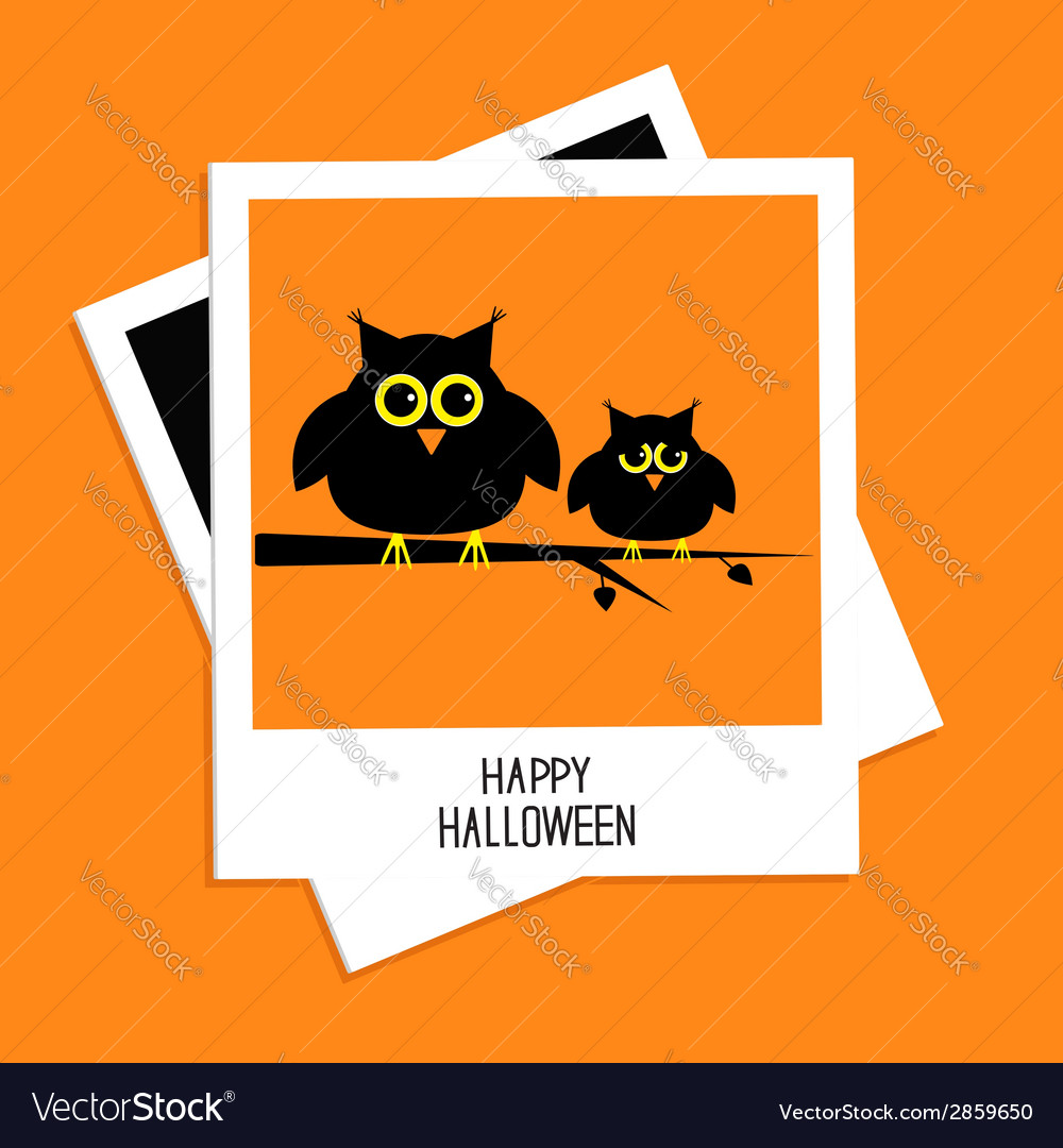 Instant photo with cute owls happy halloween card vector | Price: 1 Credit (USD $1)