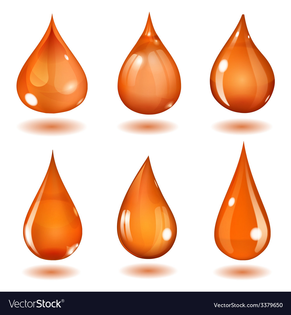 Orange drops vector | Price: 1 Credit (USD $1)