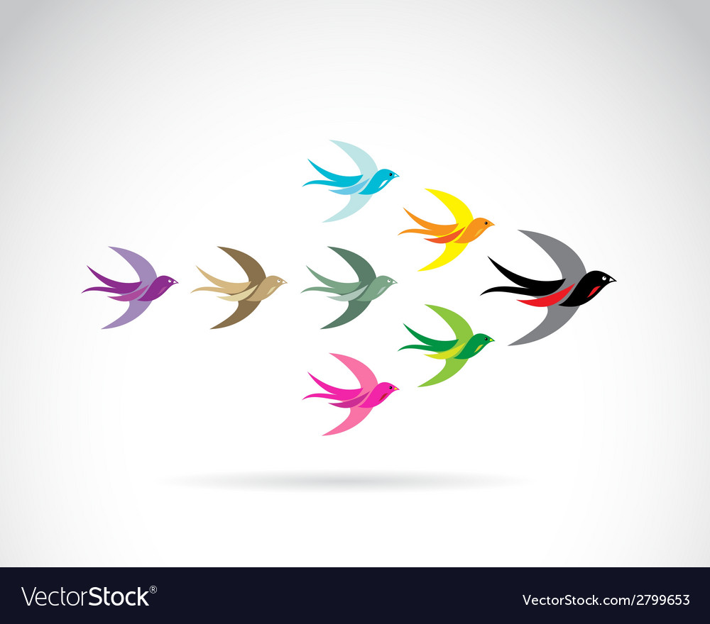 Bird swallow vector | Price: 1 Credit (USD $1)