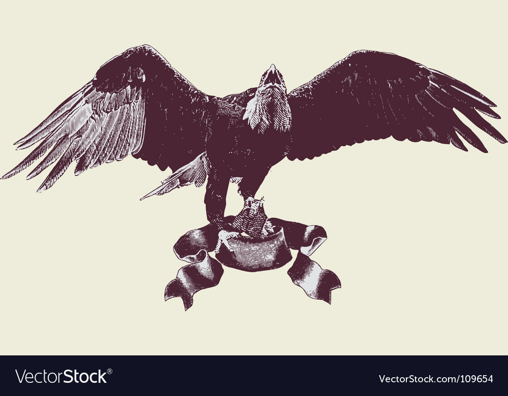 Eagle spreading its wings vector | Price: 1 Credit (USD $1)