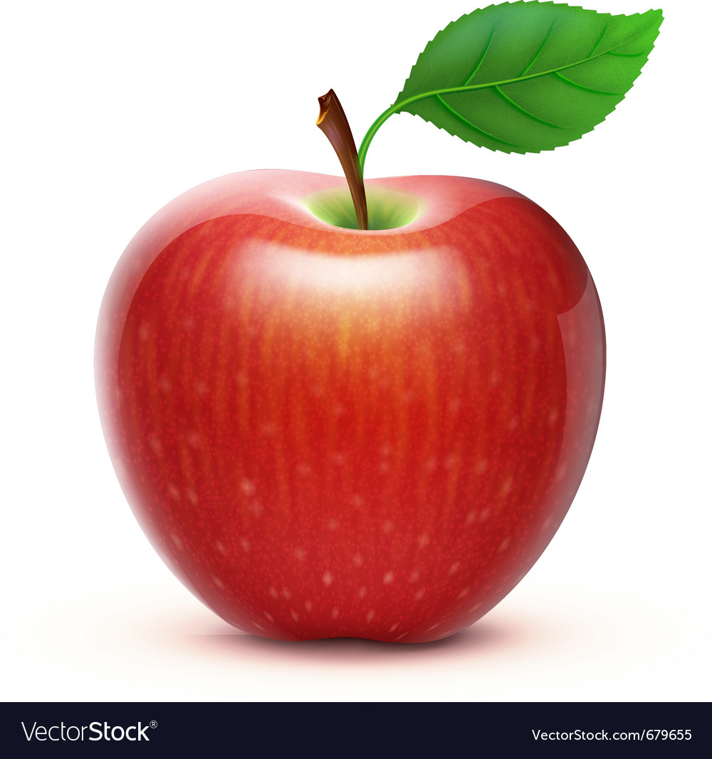 Red apple vector | Price: 3 Credit (USD $3)