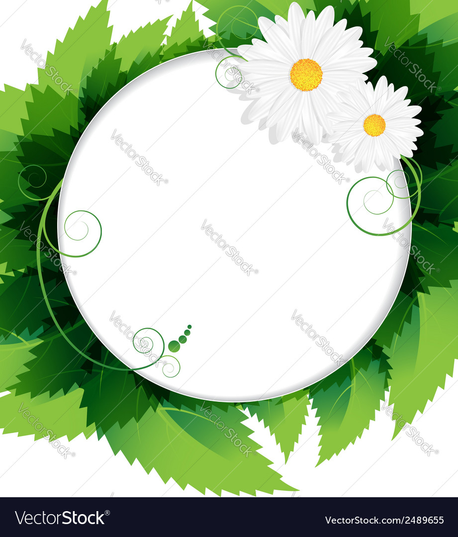 Summer foliage background vector | Price: 1 Credit (USD $1)