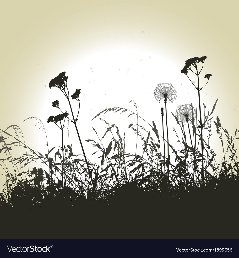Meadow weeds and dandelions silhouettes vector | Price: 1 Credit (USD $1)