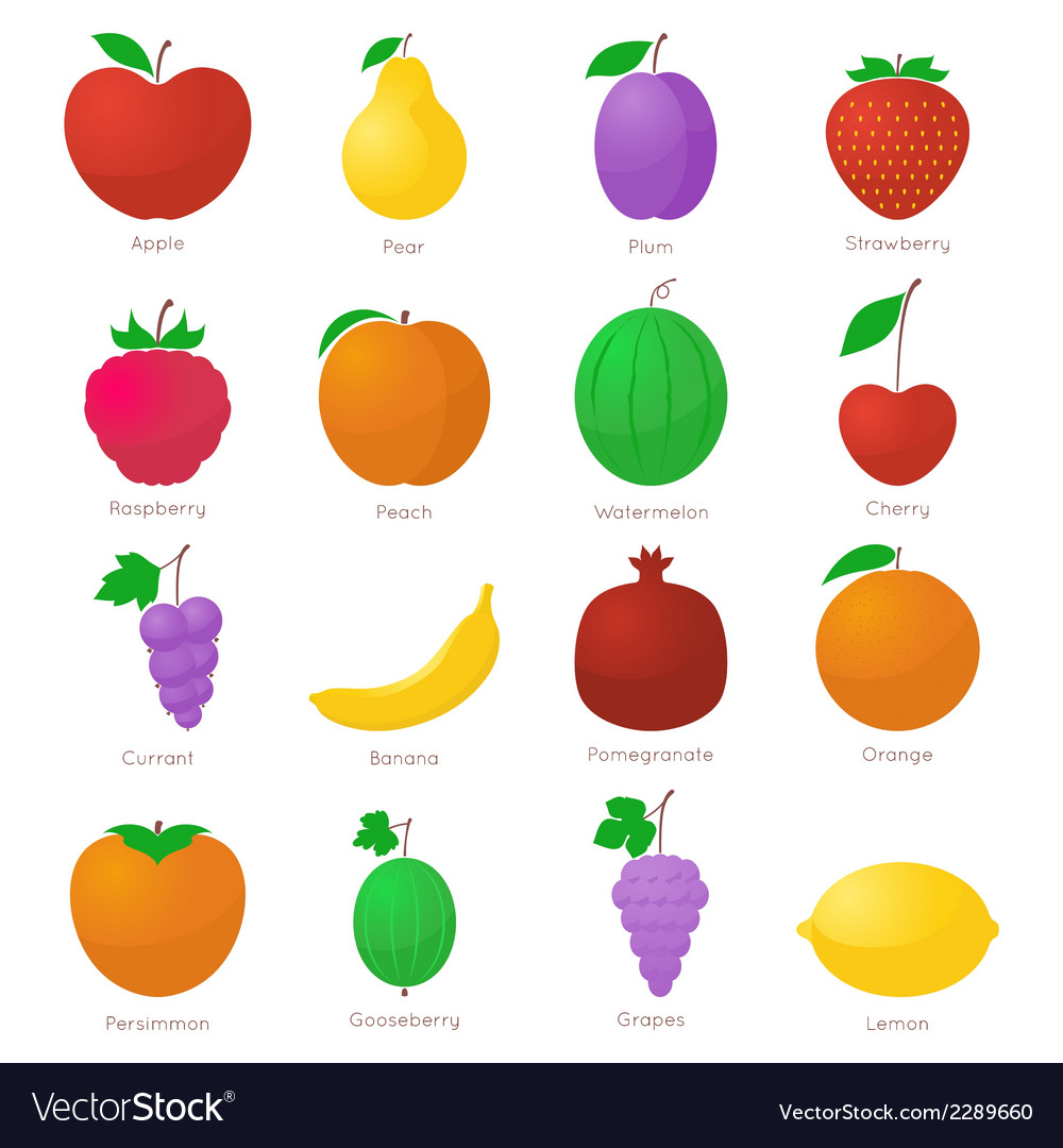 Set of fruits vector | Price: 1 Credit (USD $1)