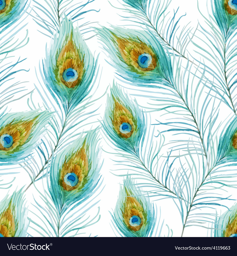 Peacock feather vector | Price: 1 Credit (USD $1)