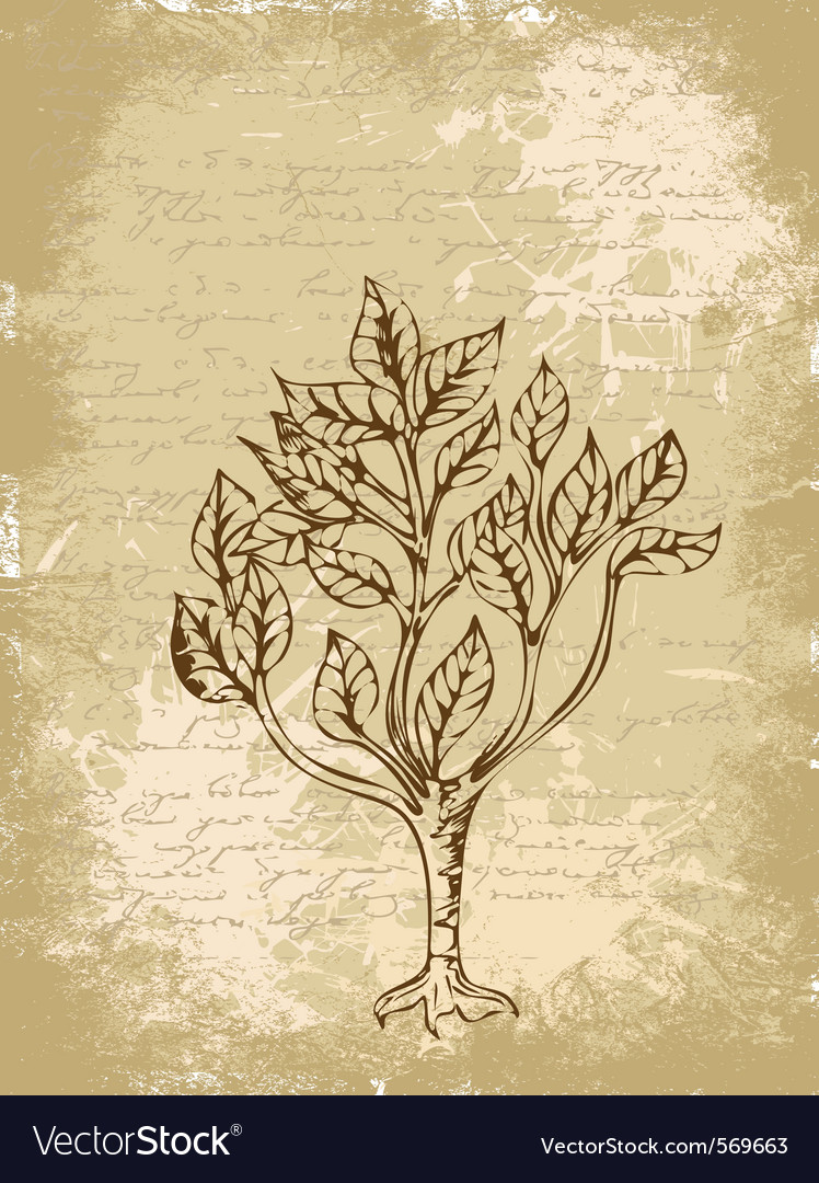 Tree sketch vintage background vector   Price: 1 Credit (USD $1)