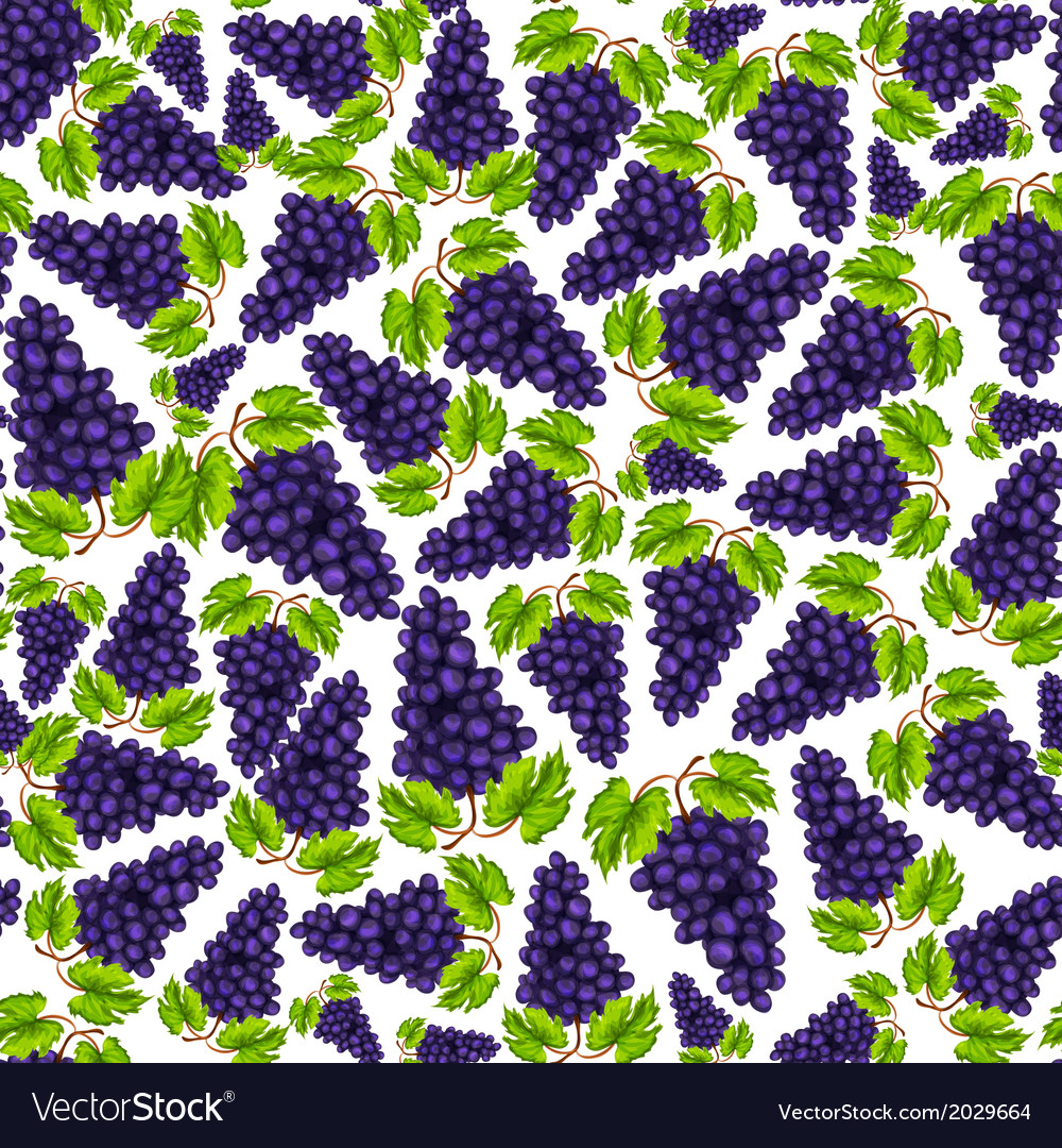 Seamless grapes fruit pattern vector | Price: 1 Credit (USD $1)
